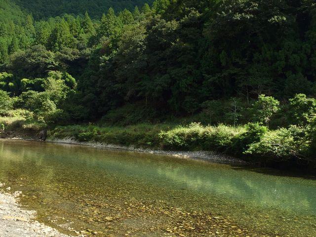 鮎が泳ぐ川_川湯温泉