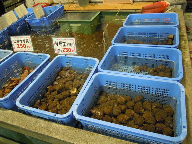 新鮮な貝類。美味しそう!_道の駅よしうみ いきいき館