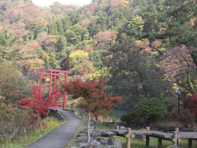 紅葉_庄川水記念公園