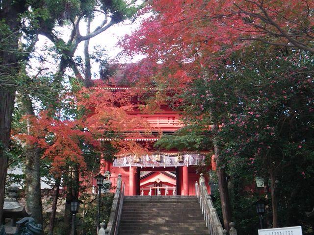 楼門と紅葉_住吉神社