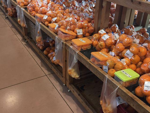 今の季節は柑橘類でいっぱいです(^O^☆♪_天草とれたて市場