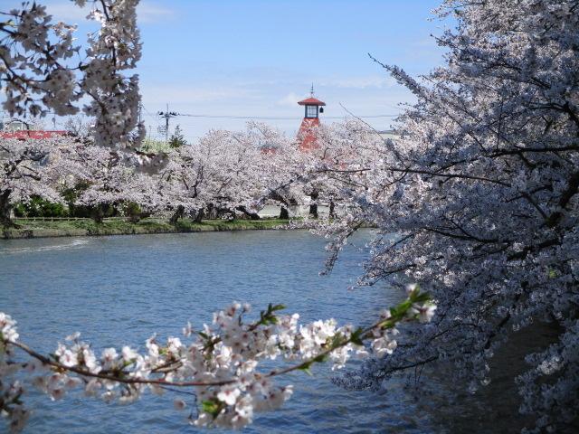 お堀の眺め①_弘前公園