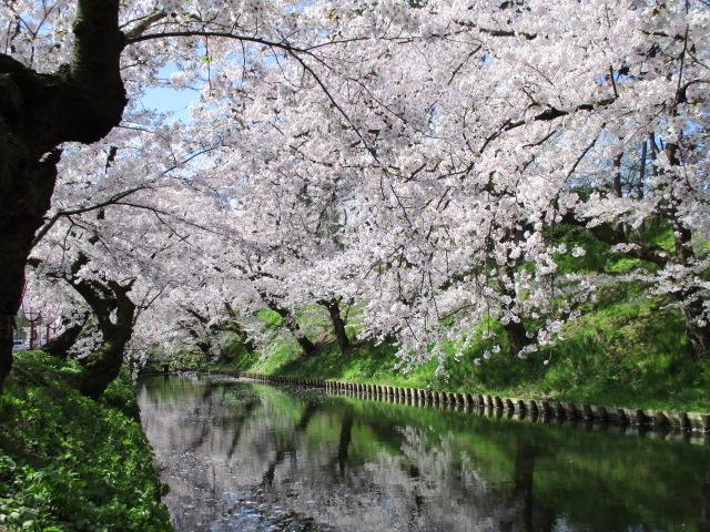 お堀の眺め②_弘前公園