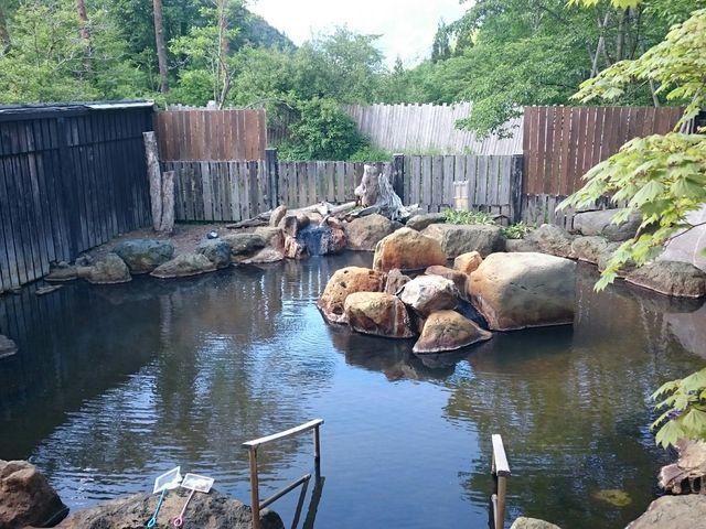 深山桜庵   露天風呂   掛け流しの茶褐色の湯でした_平湯温泉