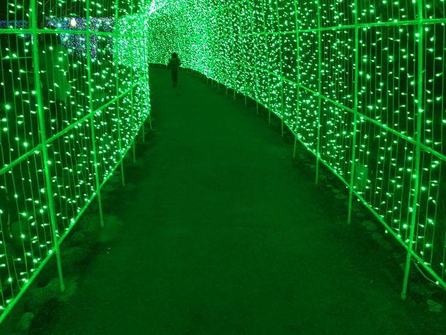光のトンネル_タオル美術館