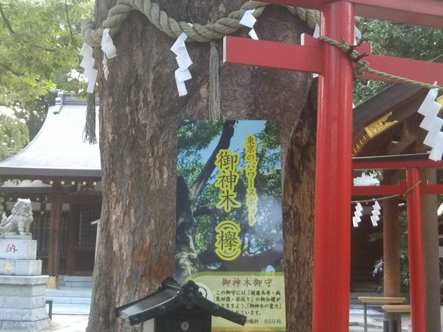 新田神社_新田神社