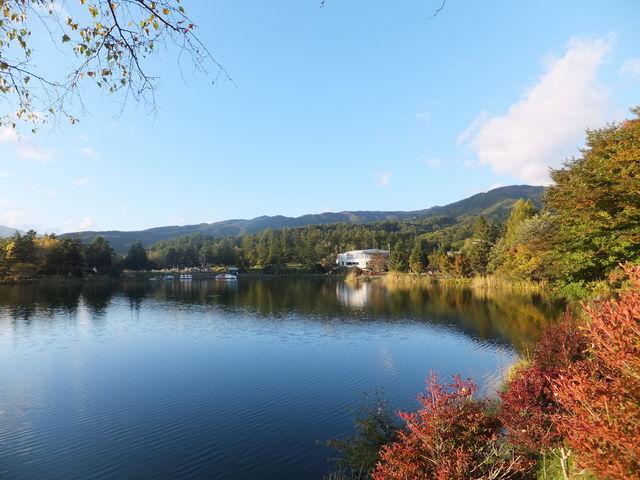 紅葉が始まった頃です。_蓼科湖