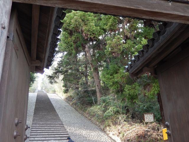 長い石段_大年寺山公園