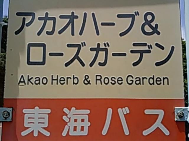熱海城も含め おもな観光施設 全部周ります_湯~遊~バス