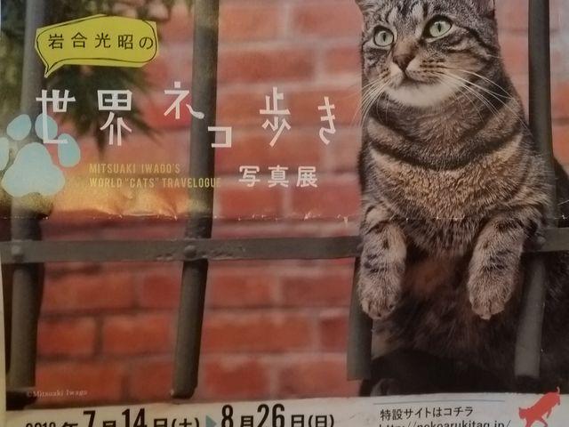パンフレット_北九州市立美術館