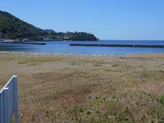 ちゃたろうさんの土肥海水浴場への投稿写真1