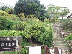 公園 岡本 梅林