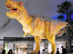 福井 県立 恐竜 博物館 アクセス