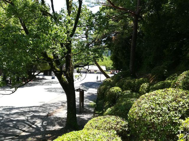 庭園_高知公園