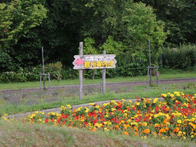 北西の丘展望公園_北西の丘展望公園