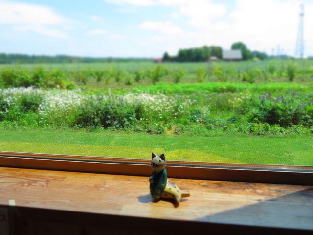 窓からの眺めもいい_ファームレストラン野島さんち