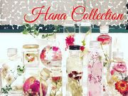 Hana Collectionの写真1