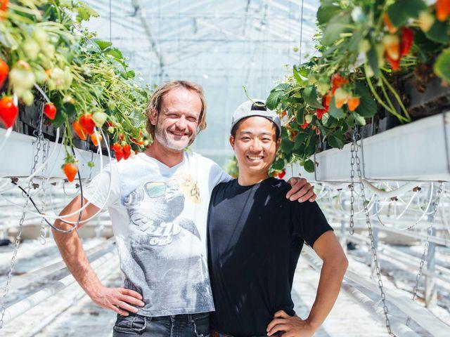 園主はイチゴの原産国オランダで修行をしてました_井上寅雄農園