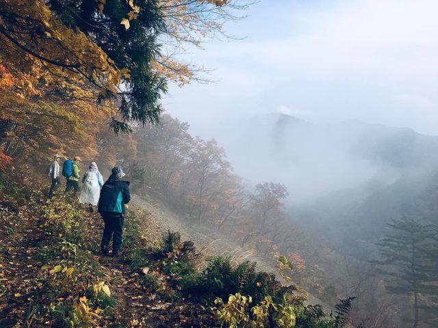濃霧の探検。自然がくれるサプライズもアウトドアアクティビティの魅力の一つ♪_北上巣箱