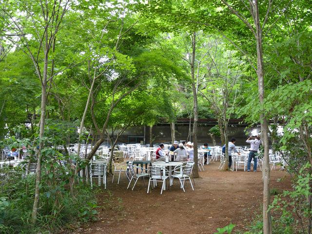 野外の森林試食会場_フォレストパーク メロンの森