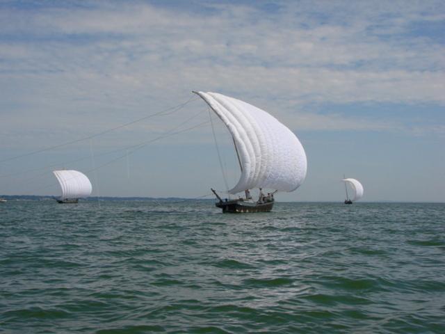 観光帆引き船(玉造地区)観光帆引き船(玉造地区)