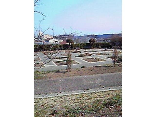 メディカルハーブガーデン 生活の木 薬香草園