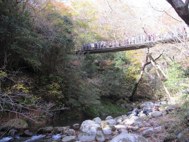 2014年11月16日撮影) 花貫渓谷・汐見滝吊り橋_花貫渓谷