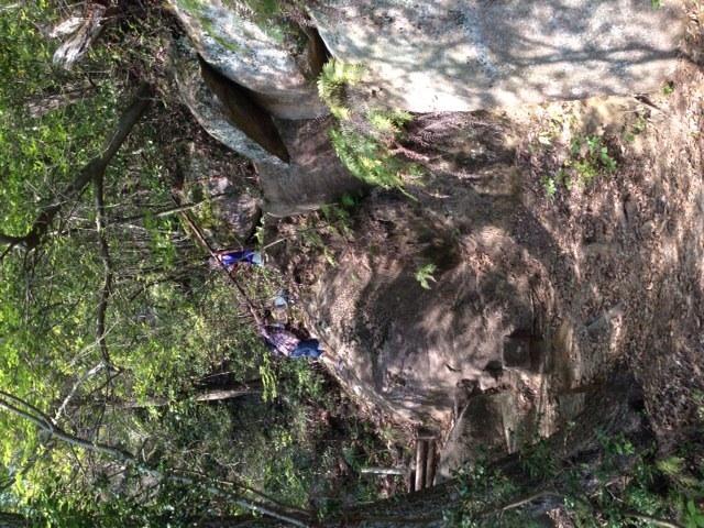 坂がきついけど展望台の見晴らしは最高〓_岩屋堂公園