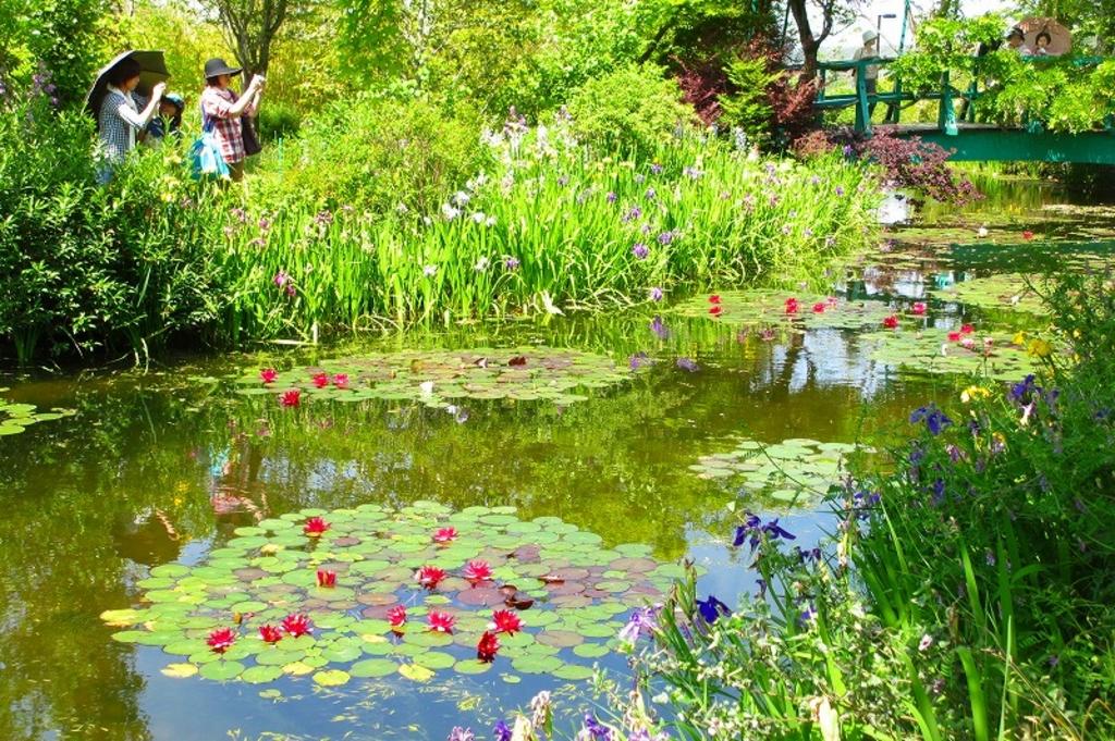 北川村「モネの庭」マルモッタン