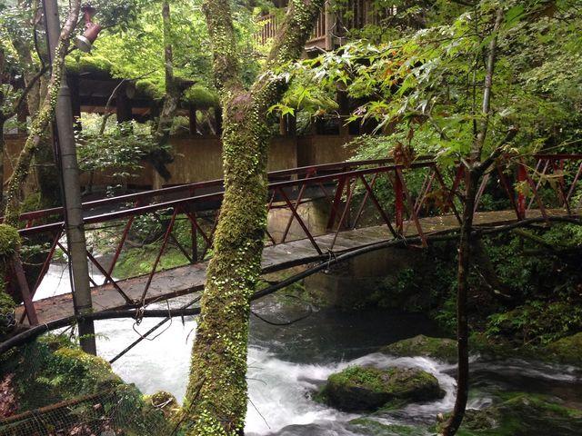 渡り廊下からの景観。7月中旬でもとっても涼しい_一の又渓谷温泉