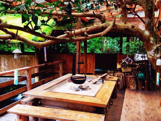 苔むした屋根。なかなか見られなくなった良き時代の日本です。_一の又渓谷温泉