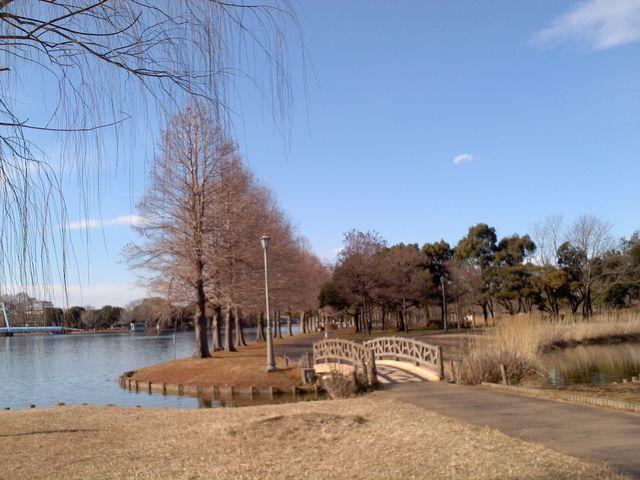 対岸は都立水元公園_県営みさと公園