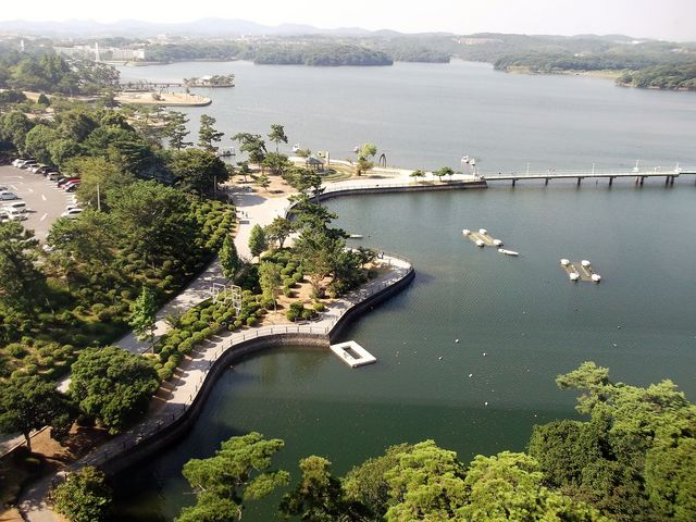 【ときわ公園】海抜65m展望台から見た園内_ときわ公園