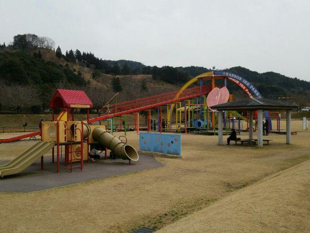 広くてのびのび遊べます 遊具もダイナミックなものもあり小学生も楽しそうでした_観音池公園