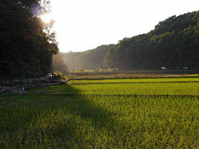 「寺家ふるさと村 四季の家」の画像検索結果