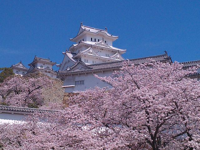 目に焼き付いています。_姫路城