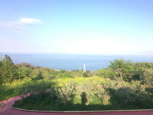 海を見おろす景色_一夜城・Yoroizuka・Farm