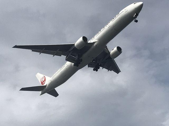 大きな飛行機_城南島海浜公園