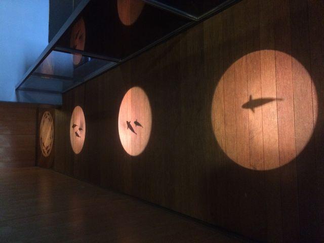 廊下に映し出された魚が可愛い(^^)_山梨県立富士湧水の里水族館(森の水族館)