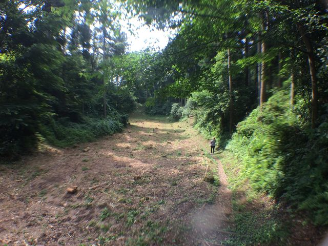 大きな空堀を抜けて_箕輪城散策コース