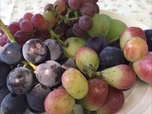 最初に全部の種類をお皿に盛って出してくれます。_宿沢フルーツ農園