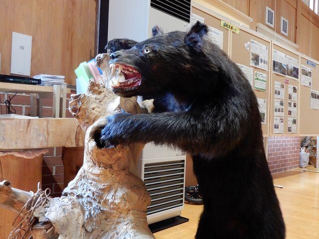 熊や雉がお出迎え_尾瀬檜枝岐山旅案内所