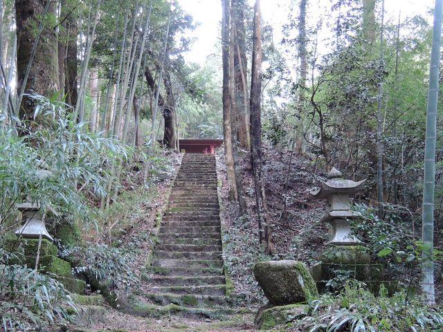 この階段を登ったら拝殿(本堂?)がありました_白山神社