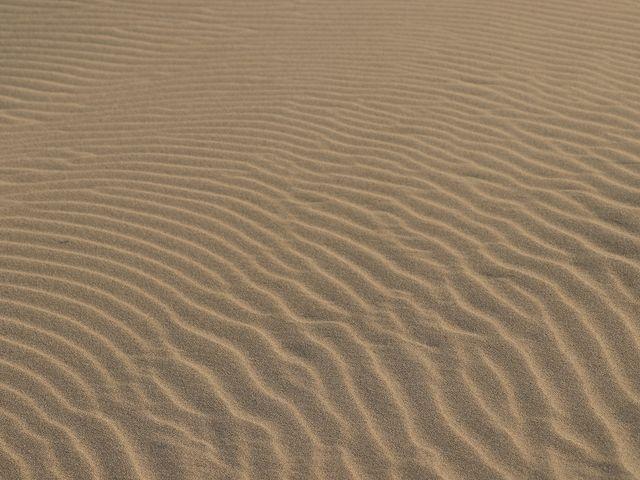 風紋。_鳥取砂丘オアシス広場
