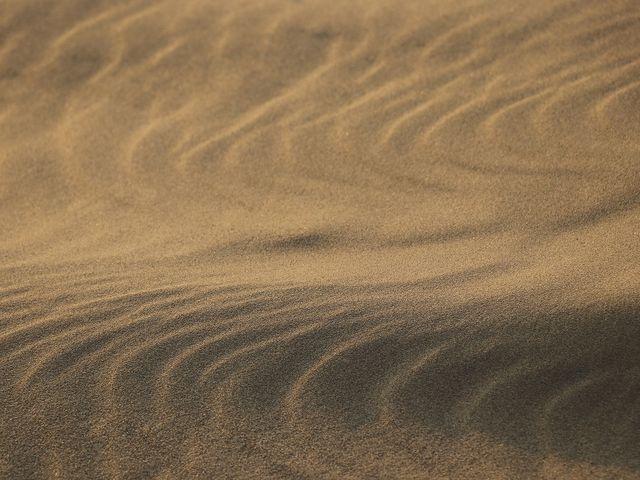 地形によって面白い形になります。_風紋・砂簾
