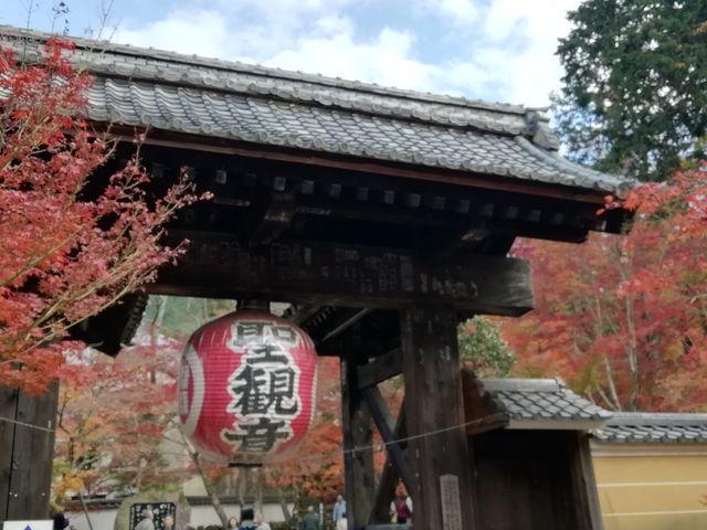 黒門と呼ばれる総門です_金剛輪寺庭園(明寿院)
