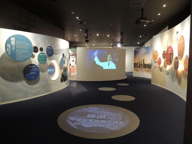 野口英世が挑んだ細菌の世界をゲームやタッチパネルで楽しみながら学べる体験型展示。_野口英世記念館