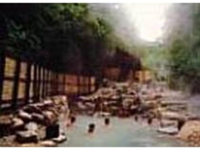 森林に包まれ開放感いっぱいの露天風呂_蔵王温泉大露天風呂
