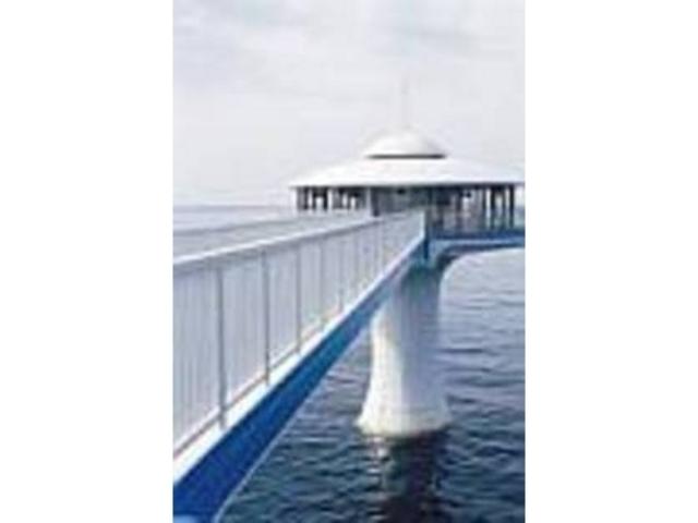 沖合100mから見渡す海上の風景も必見_白浜海中展望塔 (コーラルプリンセス)