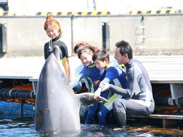 体験型施設です。イルカと遊ぶのがメイン♪_ドルフィンファンタジー